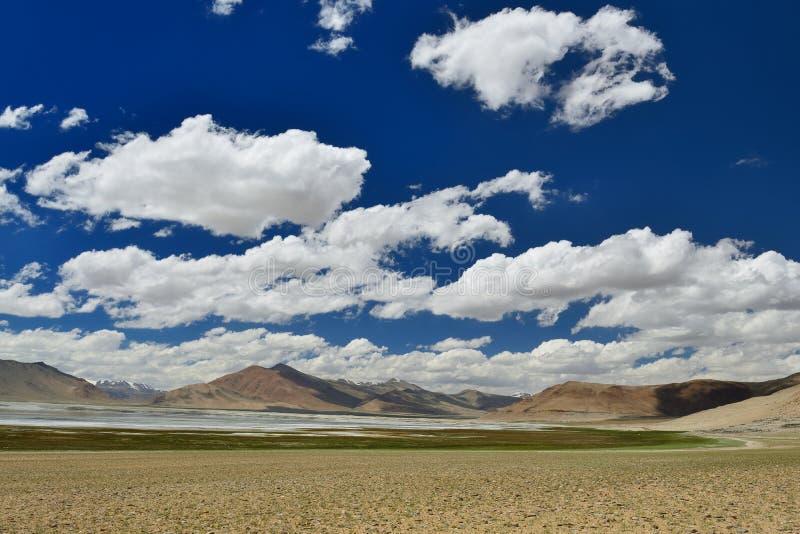 Mountains湖Tso Kar在拉达克在印度 免版税图库摄影