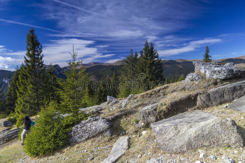 Download Mountains stock photo. Image of country, firs, deep, perspective - 28303830