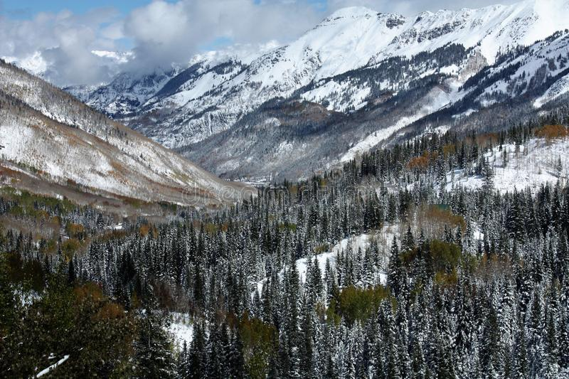 Aspen and snow-capped mountain scene along million dollar highway in Colorado stock image