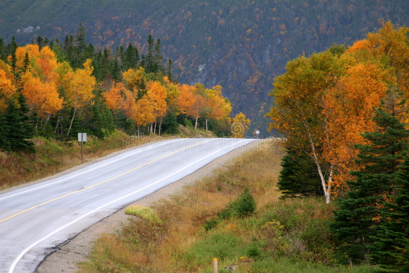 Download Mountains in Autumn stock photo. Image of newfoundland - 8498764