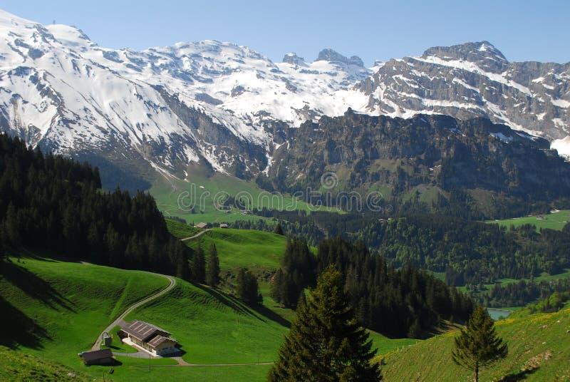 Mountains in Switzerland royalty free stock photos