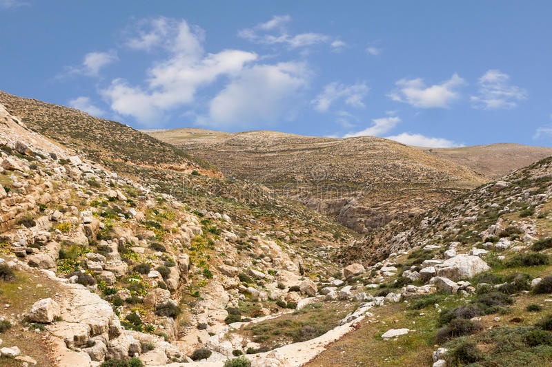 Download Mountains Of The Canyon Negev Desert In Israel Stock Photo - Image: 83708393