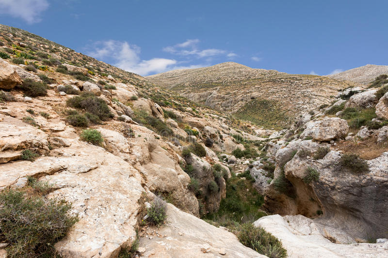 Download Mountains Of The Canyon Negev Desert In Israel Stock Photo - Image: 83708864