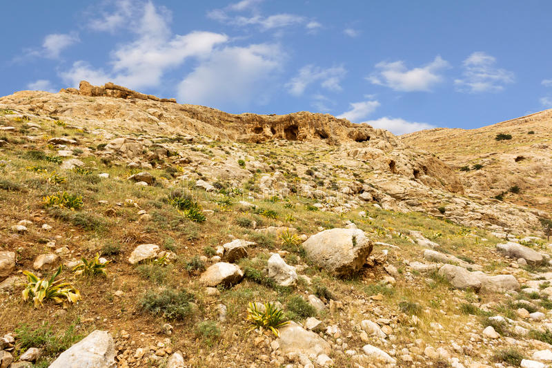 Download Mountains Of The Canyon Negev Desert In Israel Stock Photo - Image: 83709533