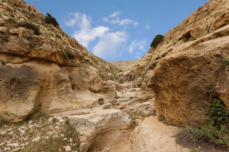 Download Mountains Of The Canyon Negev Desert In Israel Stock Image - Image: 83713315