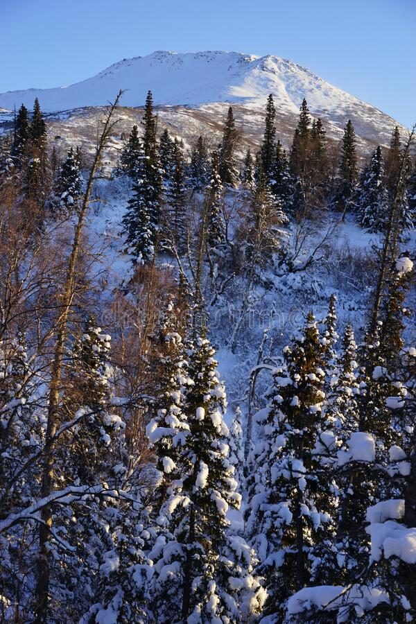 Wilds of Alaska on a Cold winter day. Mountains in the Chugach State park close to Anchorage Alaska. This day is a photo of what i was viewing as i went for a stock photo