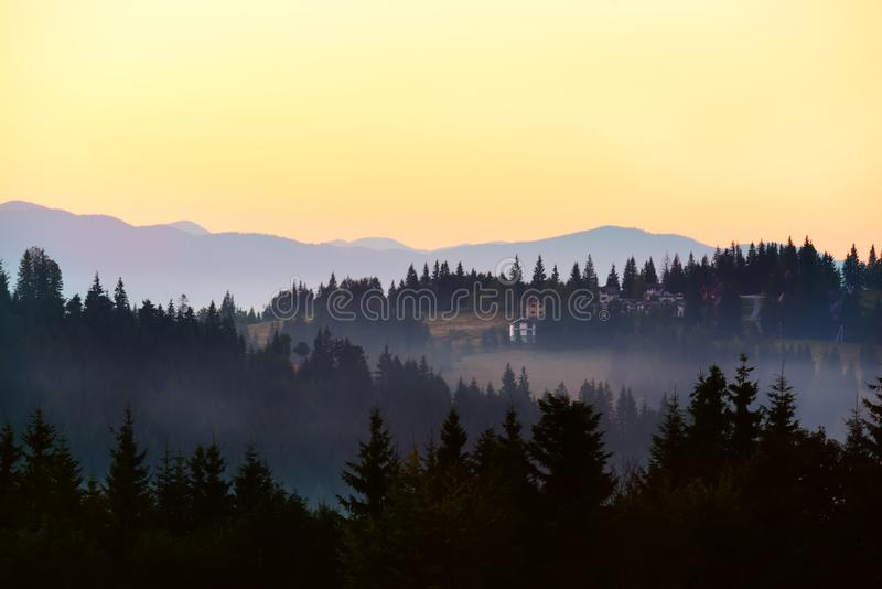 Mountains covered with huge spruce trees  and houses on the slopes at sunset. stock photo
