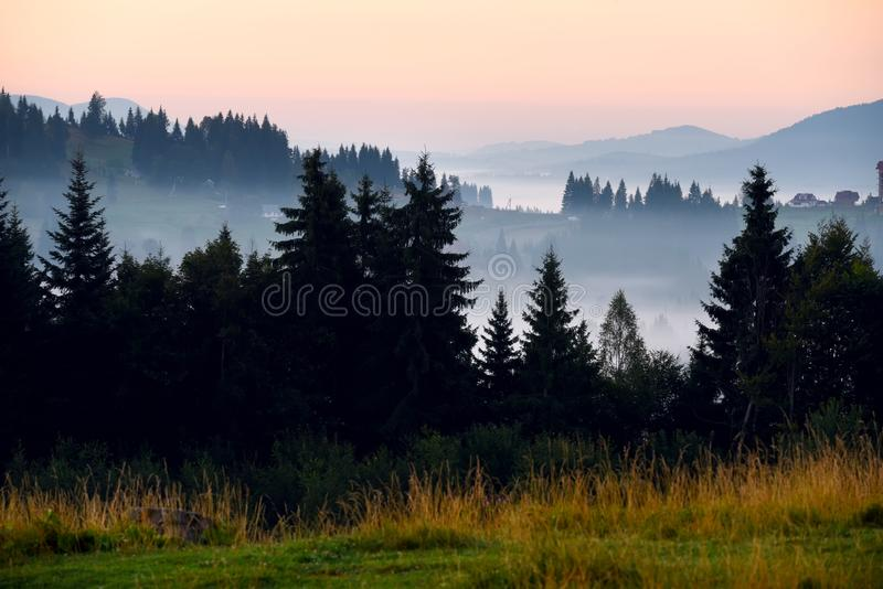 Mountains covered with huge spruce trees  and houses on the slopes at sunset. stock image
