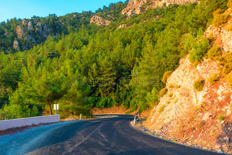 Mountains covered with pine trees royalty free stock photography