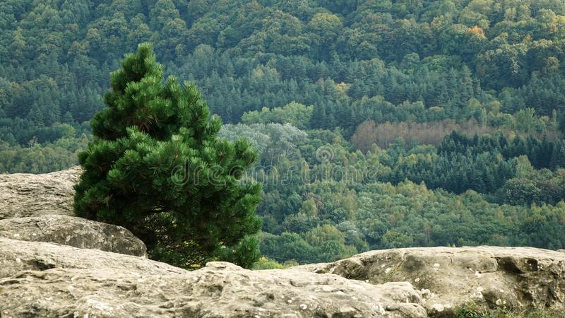 Mountains created by nature. Mountain Park of the North Caucasus. royalty free stock images