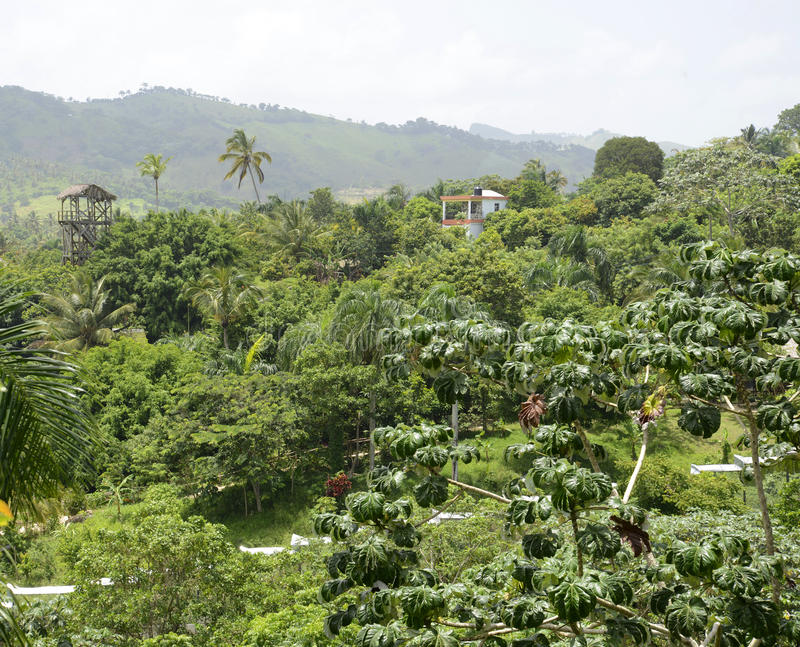 Mountains in the Dominican Republic royalty free stock photos
