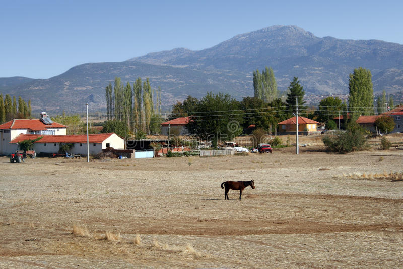 Mountains, the farm and the horses in the field autumn stock photography