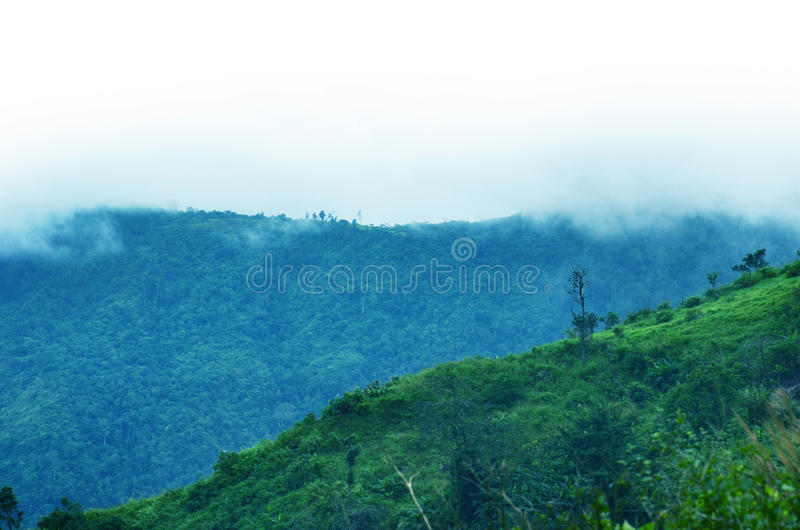 Download Mountains In A Fog. Blue Tint. Stock Photo - Image: 20797208