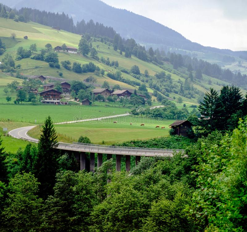 Mountains and forest with Austrian villlage. Austrian country scenery with road and cattle royalty free stock images