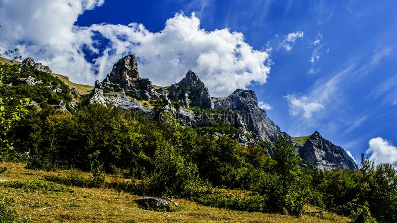 Mountains and forest stock photography