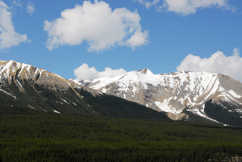Mountains and forests stock photography