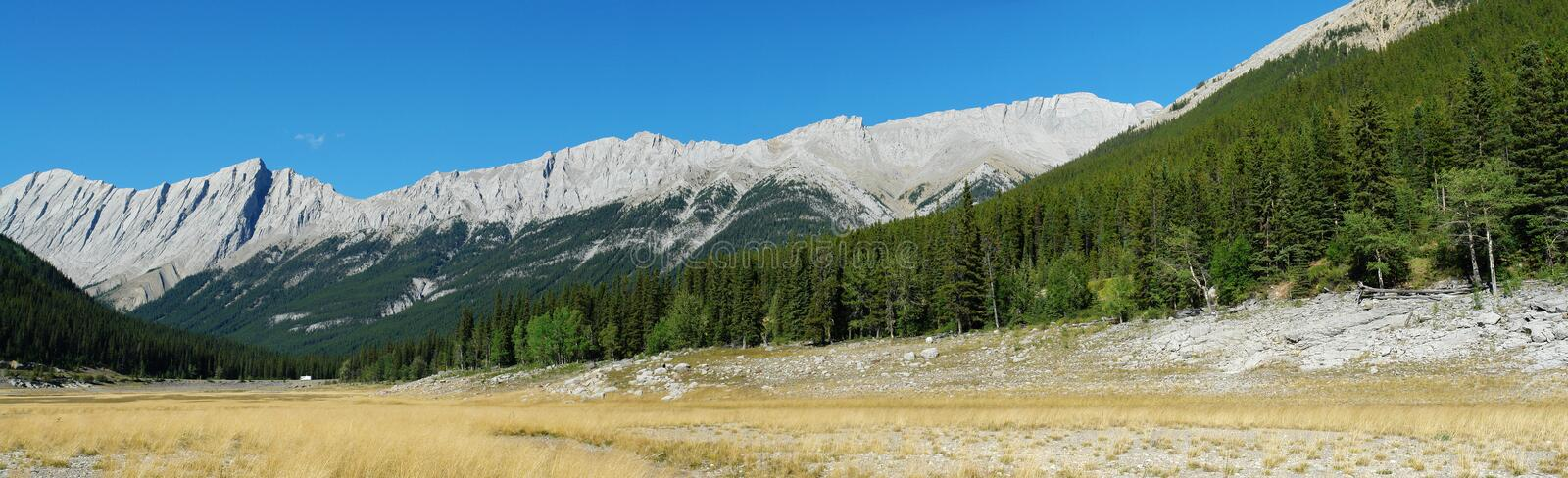 Mountains, forests and meadows. Summer panoramic view of canadian rocky mountains, forests and meadows at medicine lake area, jasper national park, alberta royalty free stock photography