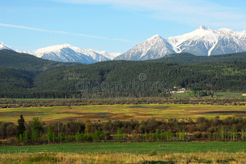 Download Mountains, Forests And Meadows Stock Image - Image: 5334177