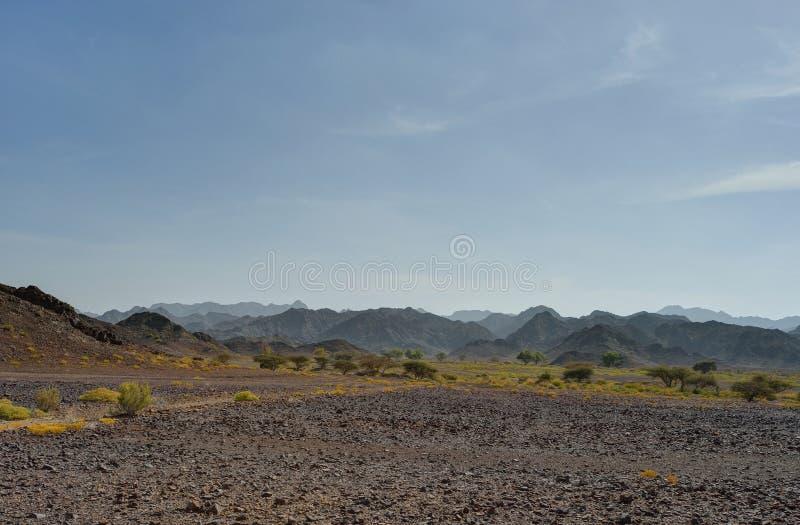 Mountains in gravel desert in Oman. Mountains in gravel desert with blue sky, Oman stock image