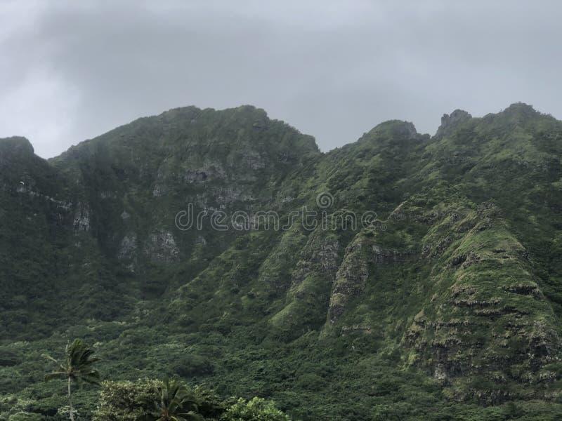 Mountains Honolulu Hawaii beauty stock photo