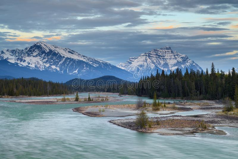 Mountains in Jasper National Park along the Athabasca River royalty free stock photos