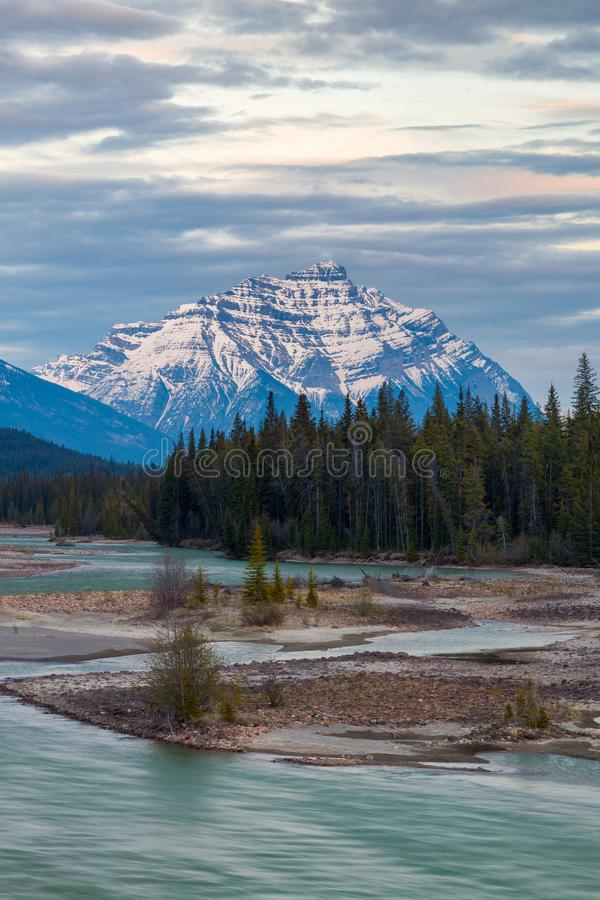 Mountains in Jasper National Park along the Athabasca River stock photography