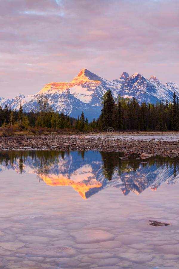 Mountains in Jasper National Park along the Athabasca River at sunrise stock image