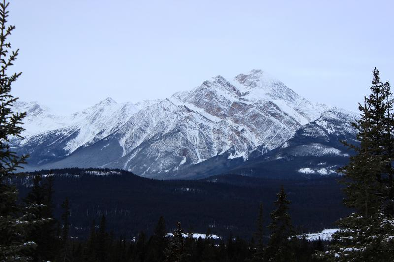 Mountains in Jasper royalty free stock image