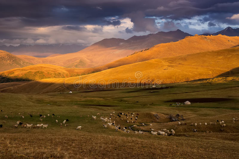 Mountains in Kazakhstan stock photography