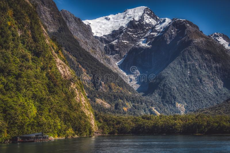 Mountains in Milford Sound fiord royalty free stock photography