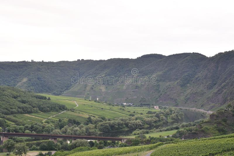 Mountains Moezel Germany with grape`s royalty free stock images