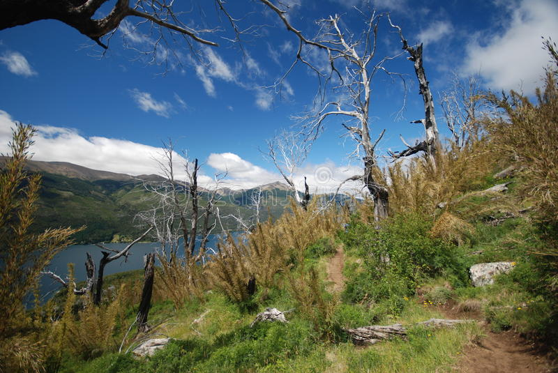 Mountains of Nahuel Huapi, Argentina royalty free stock photos