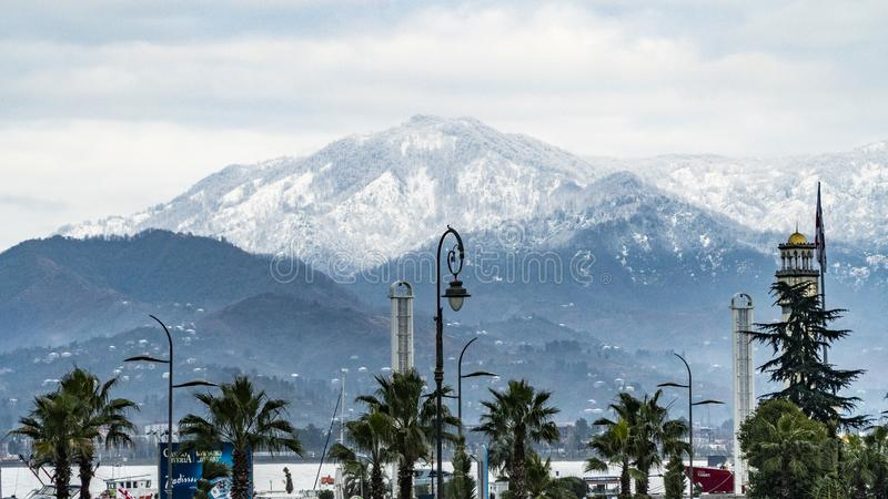 Mountains and palm trees stock images