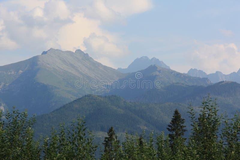 Mountains in Poland royalty free stock photos
