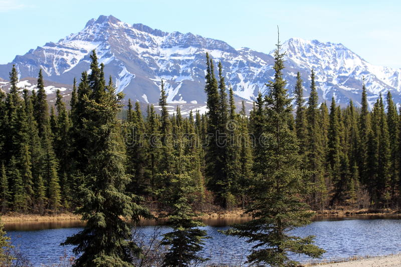 Mountains and Pond royalty free stock photos