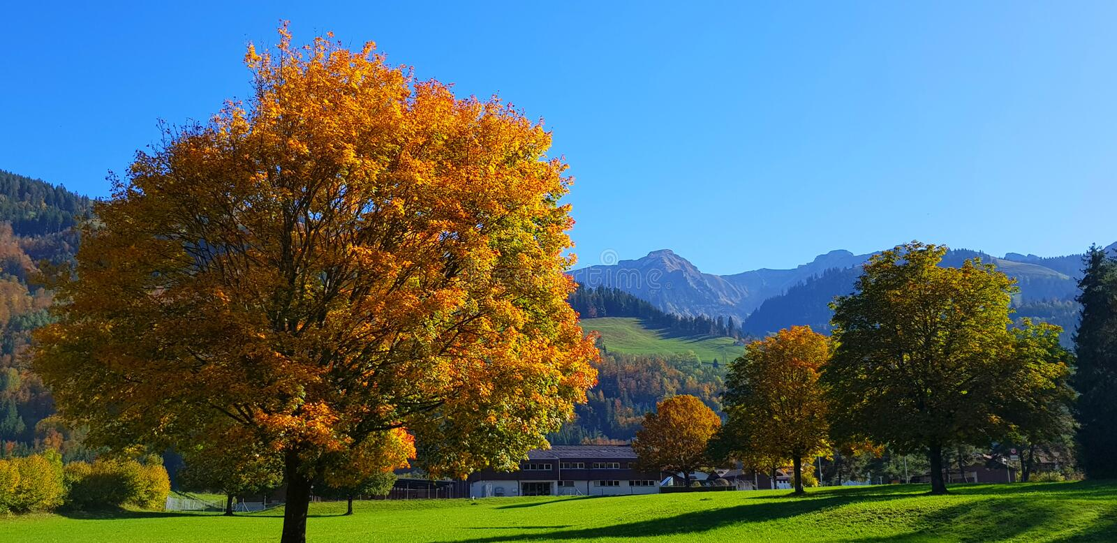 Mountains relief under the blue sky with autumn vegetation. stock photography