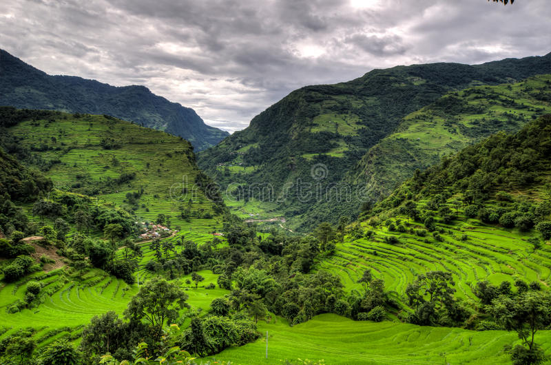 Mountains And Rice Plantations In The Annapurna stock photos