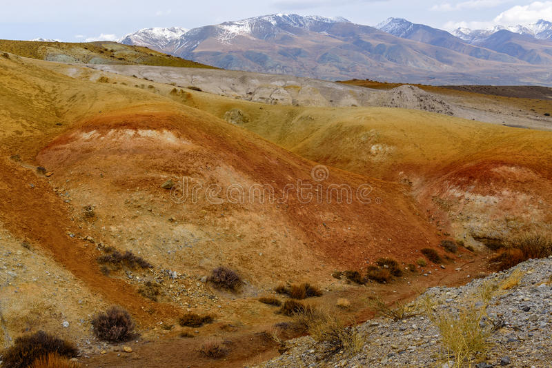 Mountains steppe desert color. The picturesque steppe desert landscape with multicolored mountains, cracks in the ground and sparse vegetation on the background stock photos