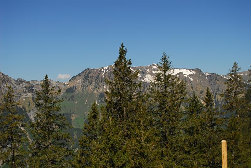 Mountains in Switzerland during May royalty free stock images