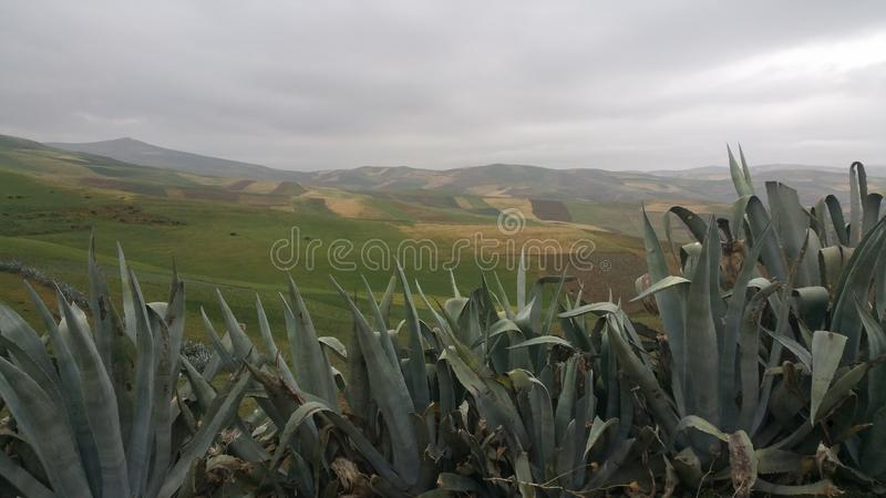 Mountains and town region fes ,morocco. Mountain town  fes morocco mountains plants trees clouds sky vacations tourisme region royalty free stock images