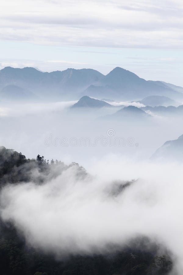 Mountains with trees and fog in monochrome color royalty free stock photo