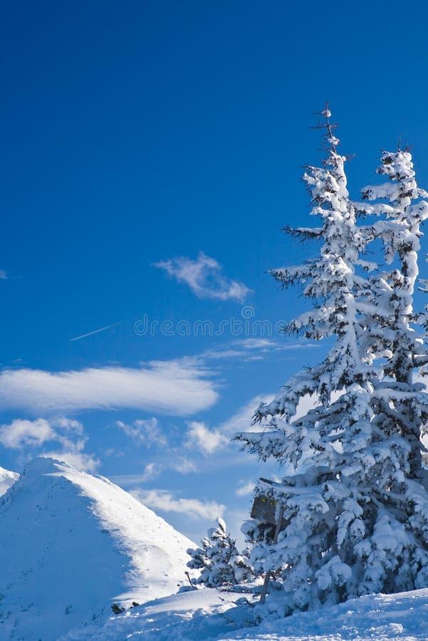 Free Mountains Under Snow. Schladming . Austria Royalty Free Stock Photos - 16494868