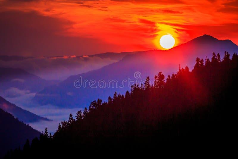 Mountains And Valley Sunrise At Chinook Pass, Mt. Rainier National Park, Washington stock photos