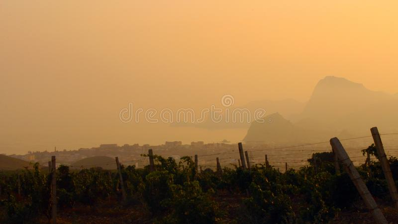 Mountains and vineyards in the background of sunset stock images
