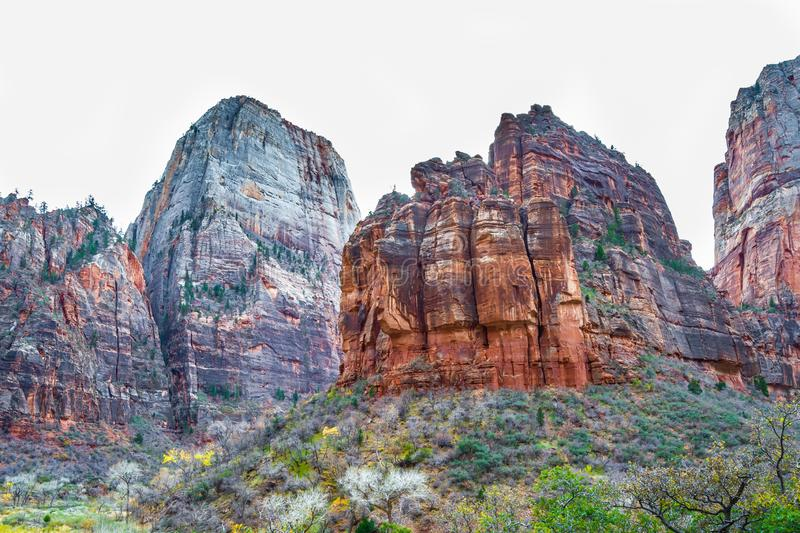 Between mountains of Zion national park royalty free stock photography