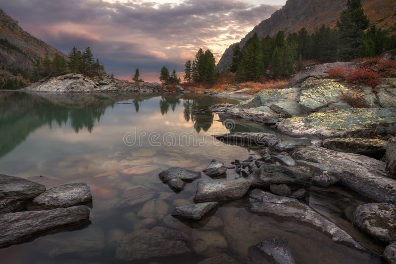 Mountainsee-Sonnenuntergang-Küste mit Kiefer Forest And Rocks, Altai-Gebirgshochland-Natur Autumn Landscape Foto stockbild