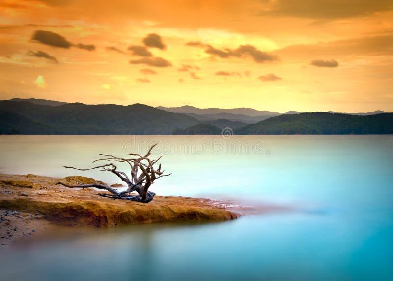 Mountainsee-Treibholz-Sonnenuntergang mit Wasser und Himmel lizenzfreie stockfotografie