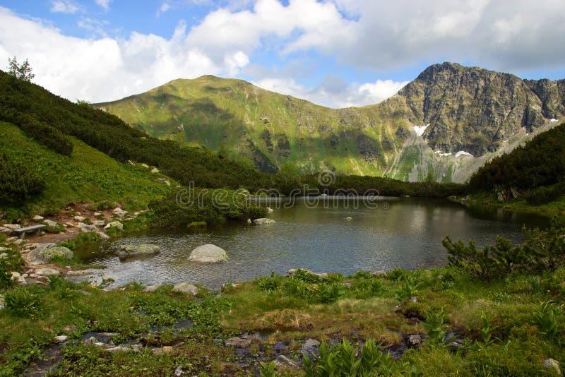 Mountainsee umgeben durch Spiesse stockfotografie