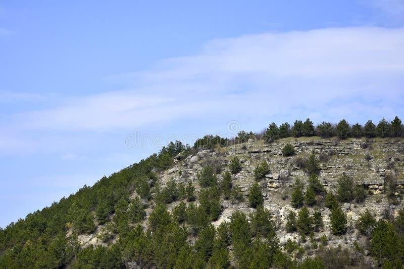 Mountainside ασβεστόλιθων που καλύπτεται με τα δέντρα πεύκων Φυσικό τοπίο ενάντια στο μπλε ουρανό με τα μουτζουρωμένα σύννεφα στοκ εικόνα