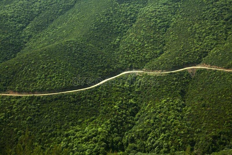 mountainside δρόμος στοκ φωτογραφία με δικαίωμα ελεύθερης χρήσης
